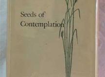 seedsofcontemplation
